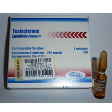 Testosterone Enanthate Norma 1ml/250mg
